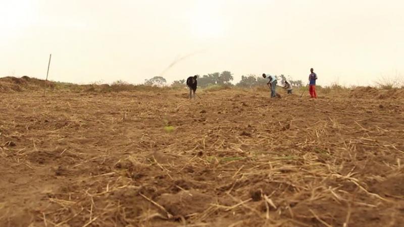 Số người thiệt mạng/năm do biến đổi khí hậu ở Congo là 100.000 người