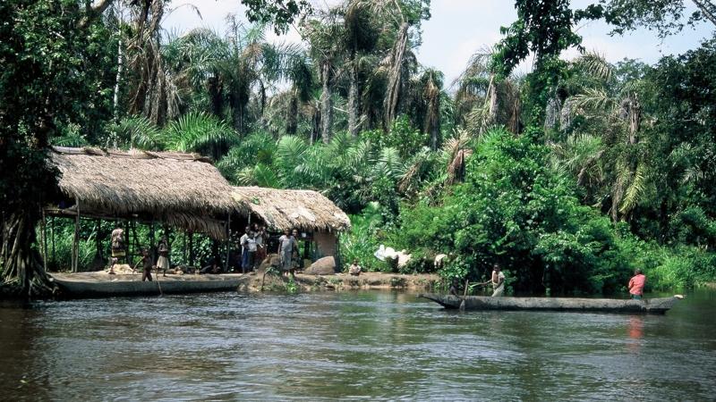 Chi phí lao động tạo Congo chỉ khoảng 472 USD/năm