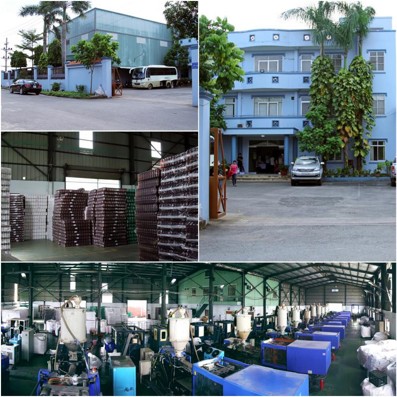 Từ một cơ sở sản xuất bao bì nhỏ năm 2006, sau 10 năm Cửu Long hiện là thương hiệu lớn tại Việt Nam về cung cấp các giải pháp đóng gói toàn diện