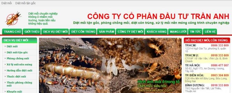 Trang web của công ty cổ phần đầu tư Trần Anh