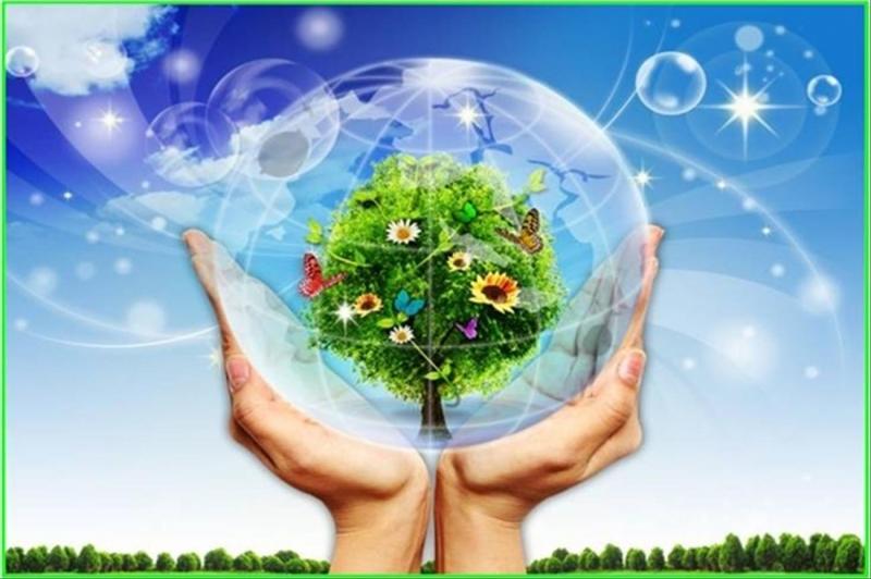 Công ty cổ phần tư vấn năng lượng và môi trường VNEEC