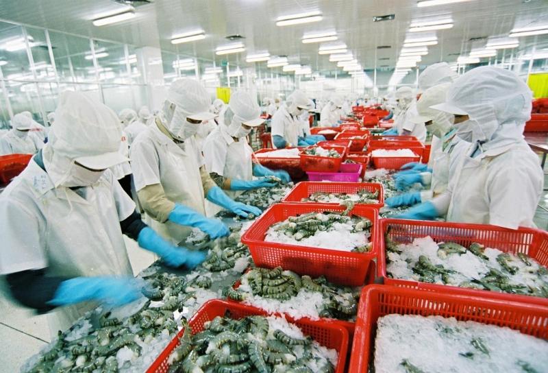 Hải sản xuất khẩu