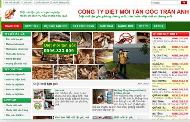 Trang website của Công ty CP đầu tư Trần Anh