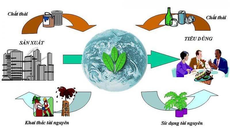 Công ty CP môi trường đô thị Đà Nẵng