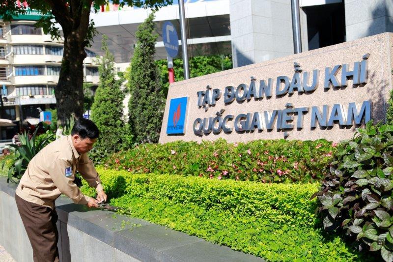 Top 10 dịch vụ chăm sóc cây xanh, cảnh quan chuyên nghiệp nhất tại Hà Nội