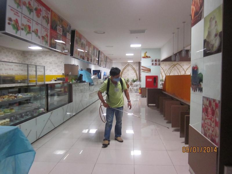 Công Ty Đại Toàn Việt chuyên cung cấp dịch vụ diệt mối, côn trùng tận nhà trên địa bàn tỉnh Đồng Nai.