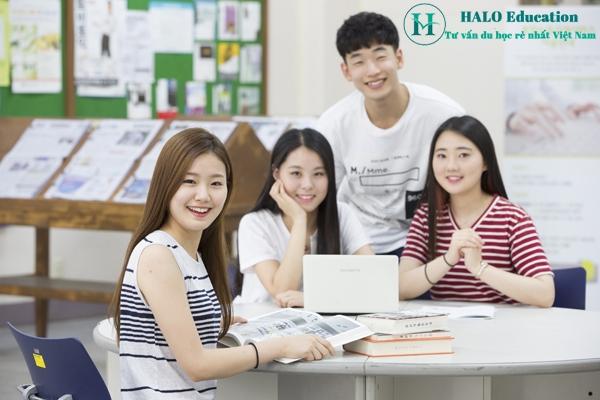 Công ty du học & Đào tạo ngoại ngữ HALO Education