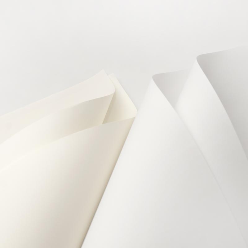 Top 6 Công ty sản xuất giấy và phân phối giấy giá rẻ và uy tín nhất Việt Nam