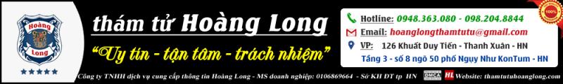 Công ty thám tử Hoàng Long