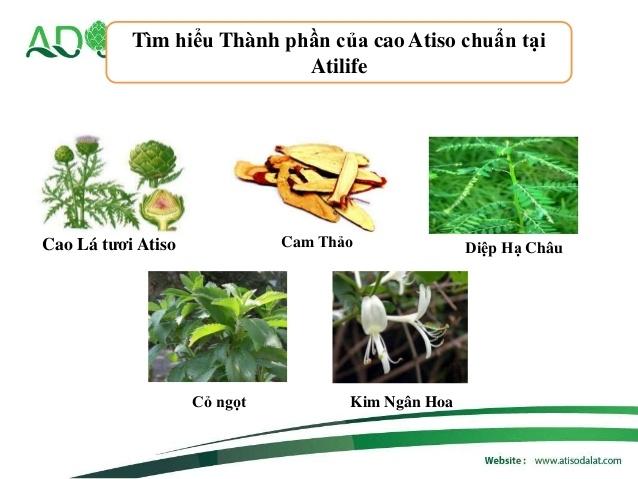 Thành phần cao Atiso Atilife