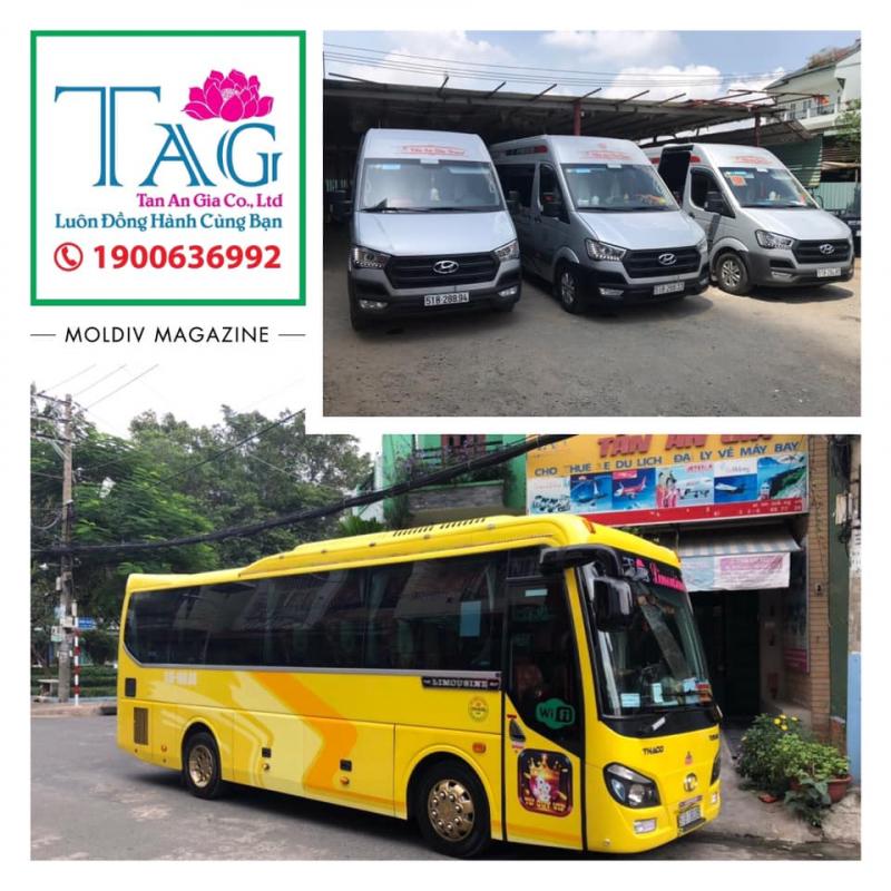 Công ty TNHH dịch vụ du lịch vận tải Tấn An Gia