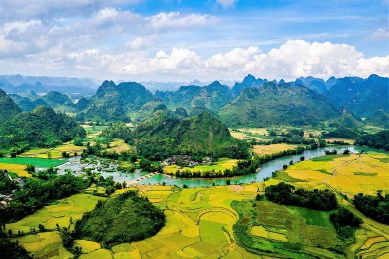 Công ty TNHH Du Lịch và Thương Mại Bốn Mùa - Bốn Mùa Tourist