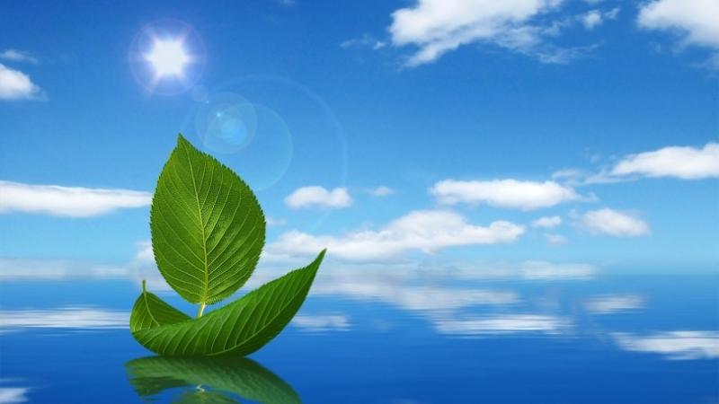 Công ty TNHH kỹ thuật môi trường Trần - Đông A