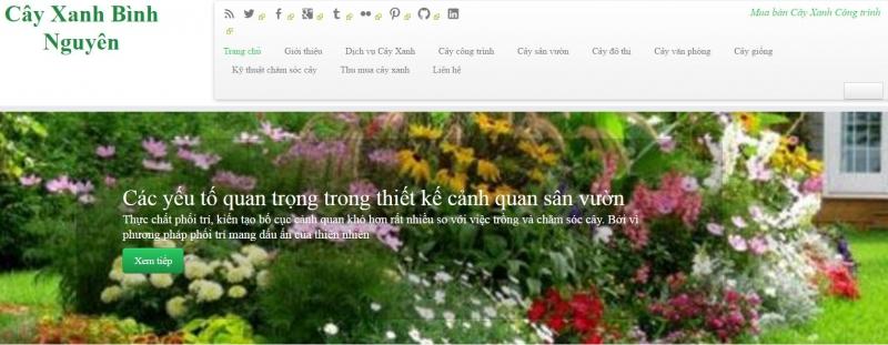 Công ty TNHH TMDV Cây Xanh Cảnh Quan Bình Nguyên