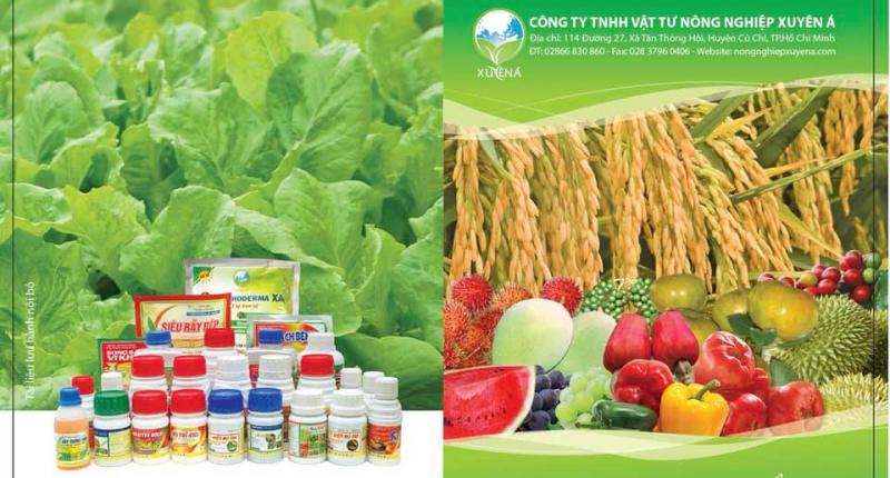 Công ty TNHH Vật tư Nông nghiệp Xuyên Á