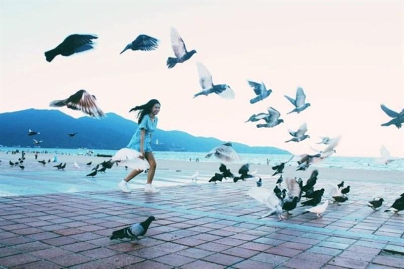 Với những chú chim bồ câu xinh xắn bạn có thể dễ dàng chụp cho mình được những bức ảnh cực lãng mạn.