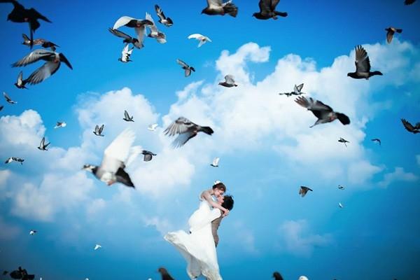 khung cảnh đẹp với đàn bồ câu đẹp mê hồn