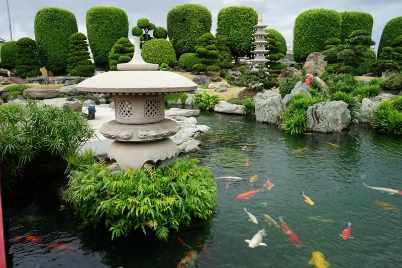 Hình ảnh tại công viên cá Koi