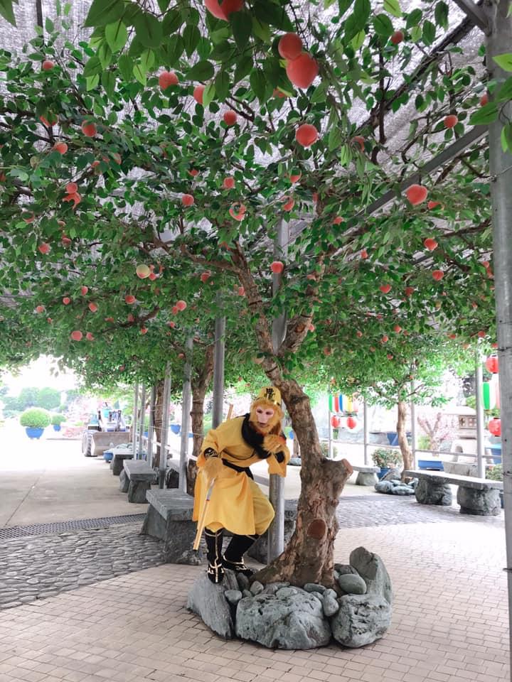 Công Viên Đá Nhật Bản - Rin Rin Park