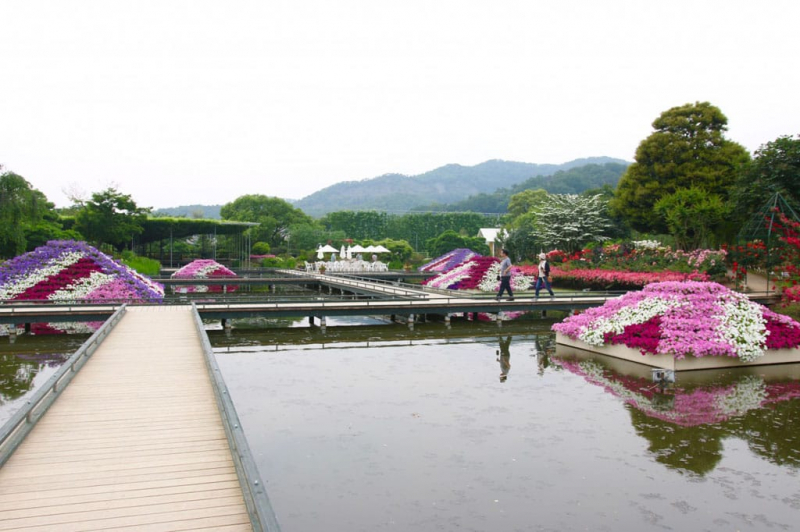 Công viên hoa tử đằng (Nhật Bản)