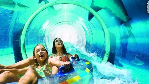 Bạn có thể thử cảm giác rơi tự do ở Tháp Neptune, lao đi giữa bể cá mập hay thư giãn trên bãi biển riêng tuyệt đẹp dài 700 m của công viên.