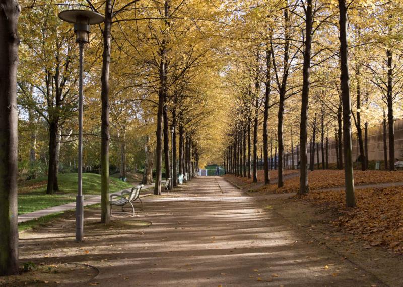 Công viên Montsouris