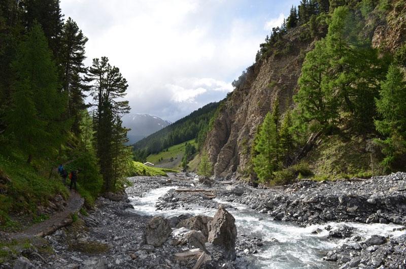 Công viên quốc gia Thụy Sĩ ra đời nhằm mục đích bảo vệ các loài động thực vật