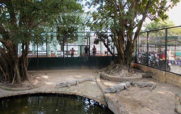 Công viên Thủ Lệ (Ba Đình)
