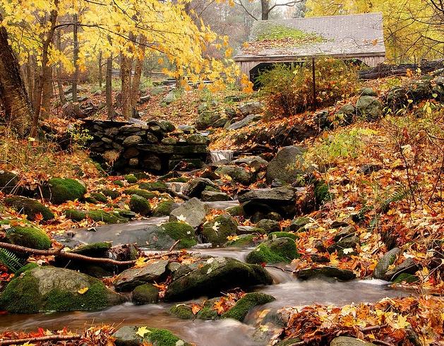 Thiên nhiên - món quà tặng tuyệt vời đối với cư dân tại đây và các du khách yêu thích cái đẹp.