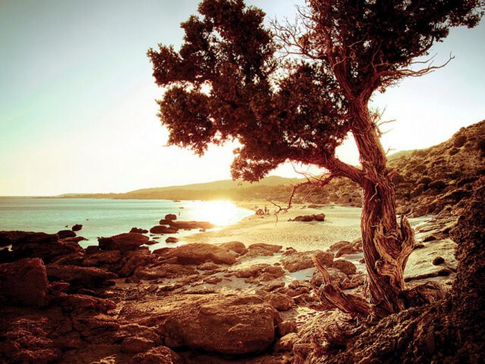 Crete là hòn đảo lớn nhất và đông dân nhất của Hy Lạ