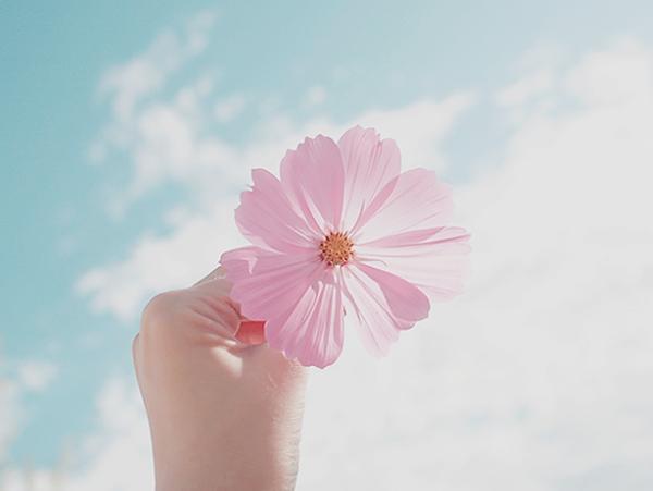 Hãy cứu lấy hạnh phúc, chúng ta đang hạnh phúc