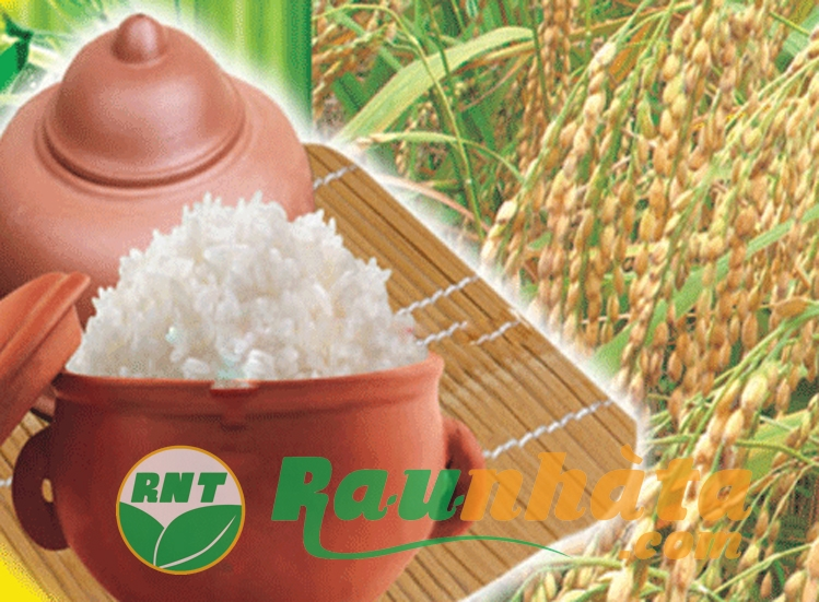 Hệ thống các cửa hàng của raunhata.com bán gạo Séng Cù với chất lượng và giá tốt nhất thị trường
