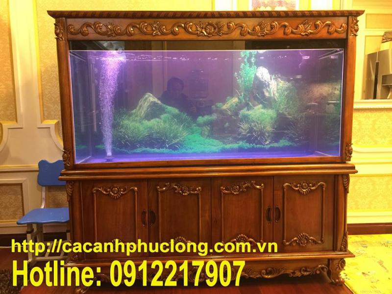 Cửa hàng cá cảnh Phúc Long