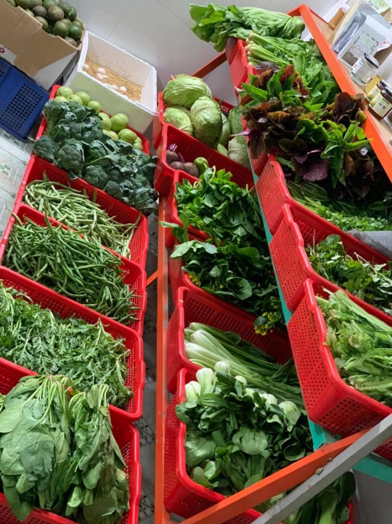 Cửa hàng rau hữu cơ OriFarm
