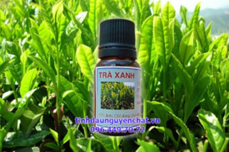 Tinh dầu trà xanh (hình ảnh lấy từ website của cửa hàng Kim Thư)