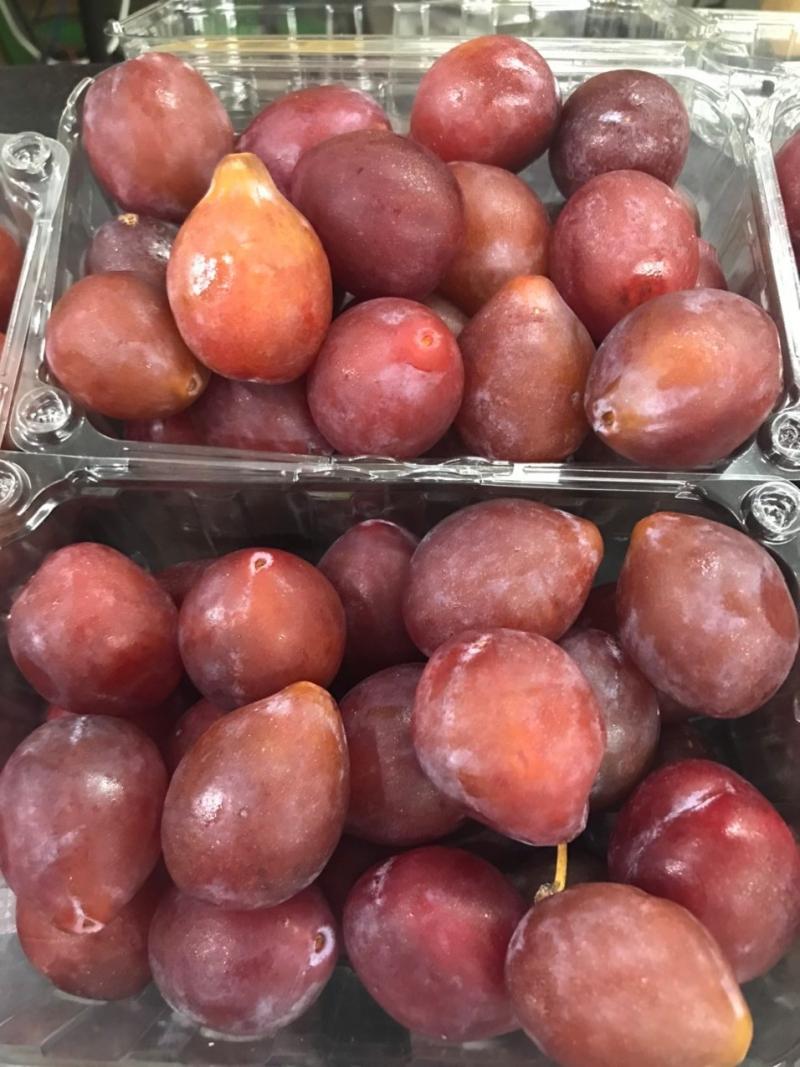 Shop trái cây nhập khẩu Greeny House