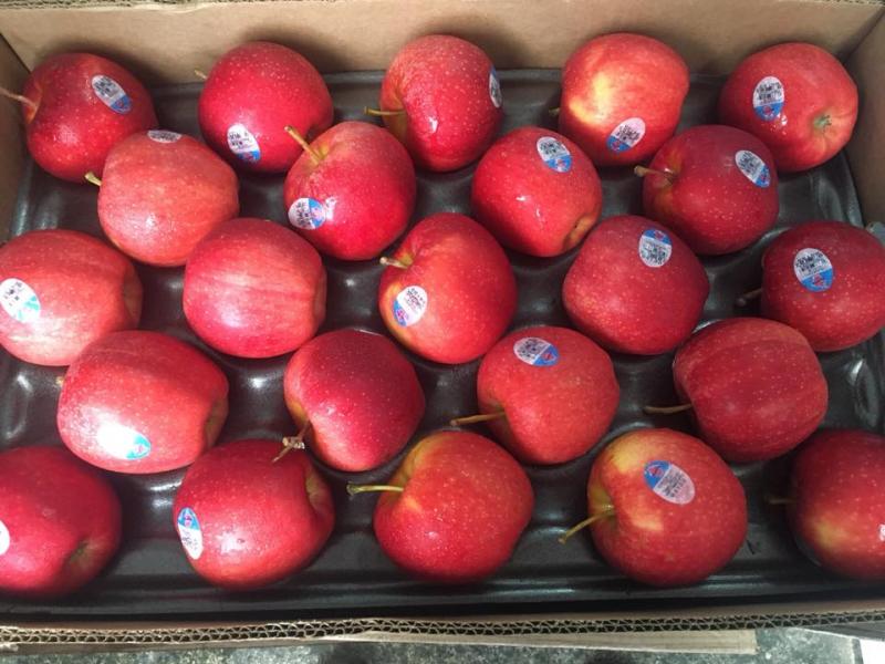 Cửa hàng trái cây nhập khẩu - thực phẩm dinh dưỡng Ken Fruit Ken Food