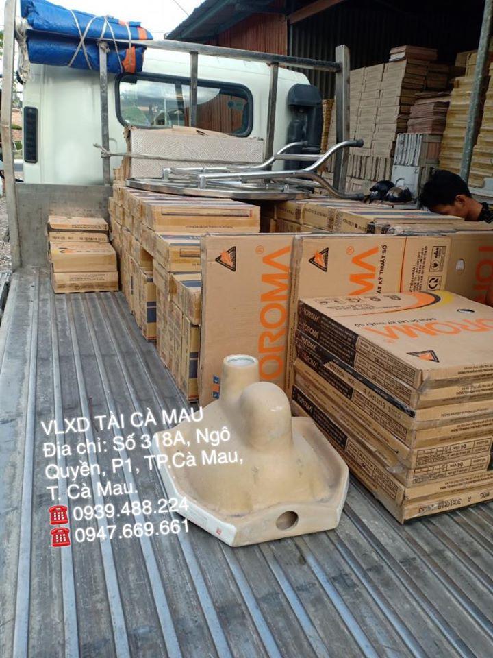 Cửa hàng VLXD & TTNT Tài Cà Mau