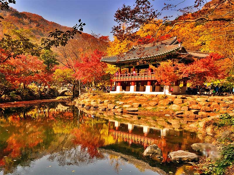 Top 10 địa điểm chụp hình đẹp nhất ở Seoul, Hàn Quốc