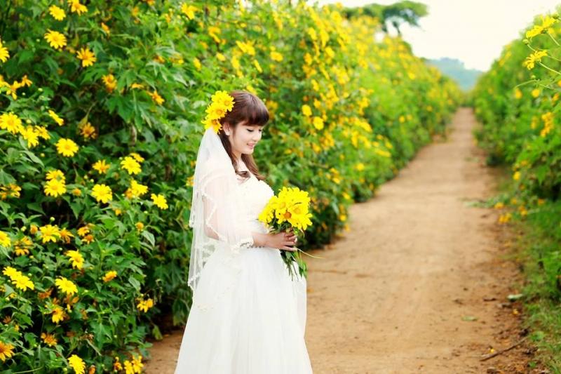 Hoa dã quỳ mang đến cảm giác dễ chịu cho bạn trong bộ ảnh cưới của mình