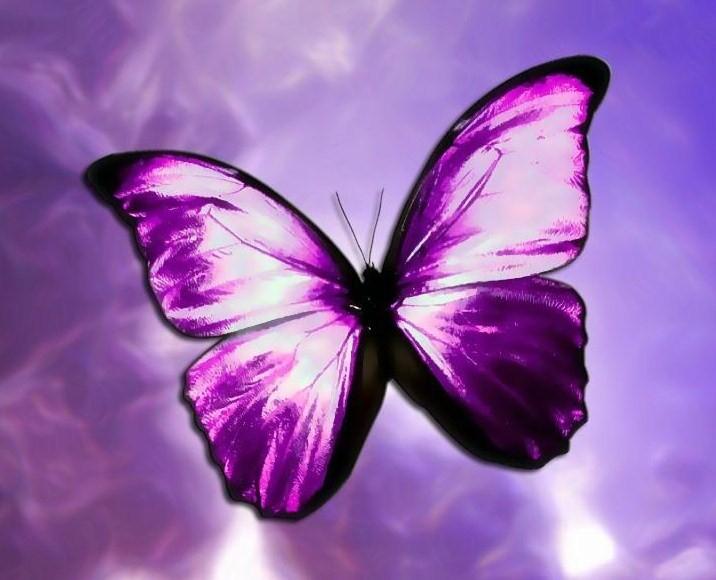 Song Ngư mơ mộng và nhạy cảm với mọi vấn đề nên sẽ vô cùng hợp với gam màu tím