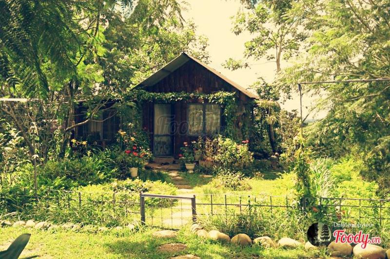 Cung Tơ Chiều Café