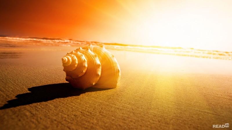 Cuộc sống có quá khó khăn, quá khắc nghiệt hay không, âu một phần cũng do lòng người