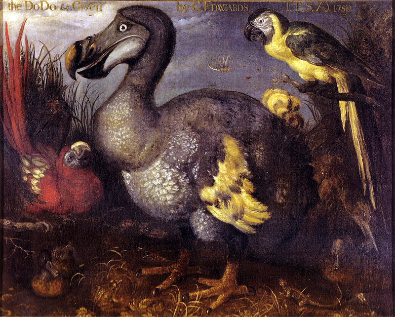 Cuộc tuyệt chủng Holocen