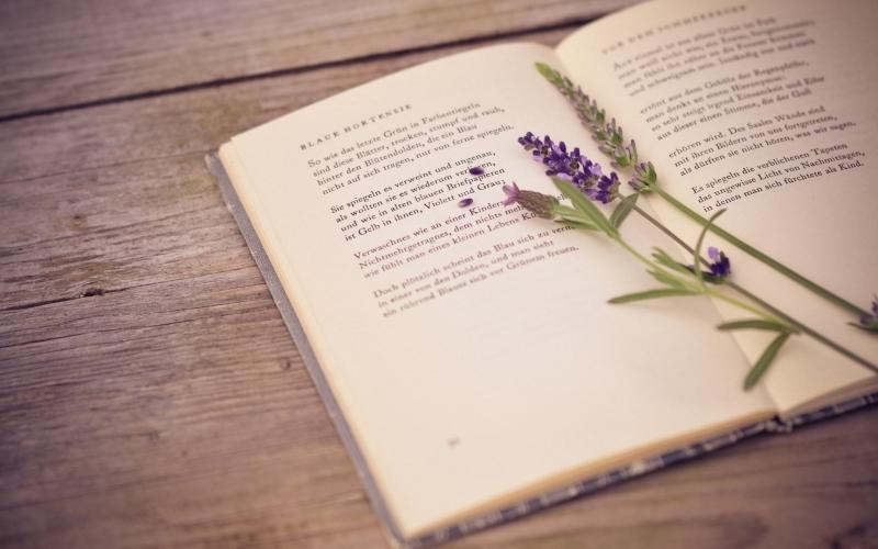 Cuốn sách