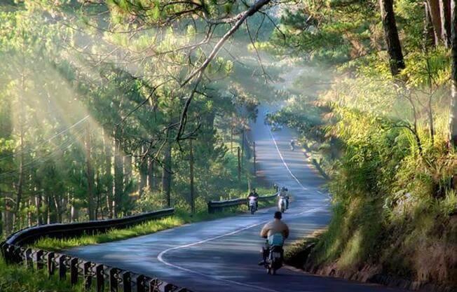 Con đường thơ mộng tại Đà Lạt