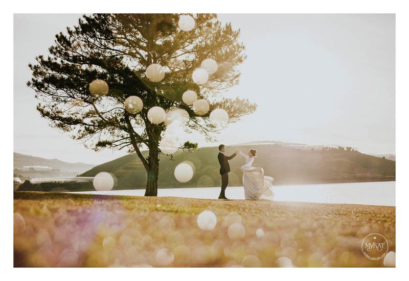 Chụp hình cưới tại Đà Lạt được rất nhiều cặp đôi lựa chọn