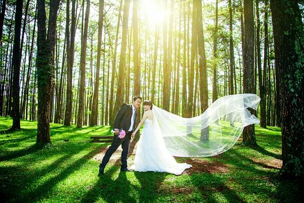 Đồi Thông Đà Lạt, nơi lý tưởng chụp ảnh cưới của các cặp đôi