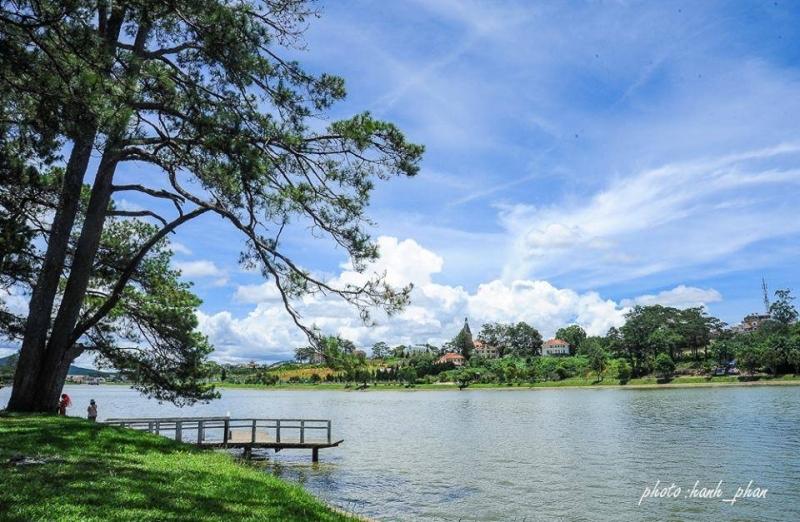 Dạo bước bên hồ Xuân Hương với cỏ cây, hoa lá
