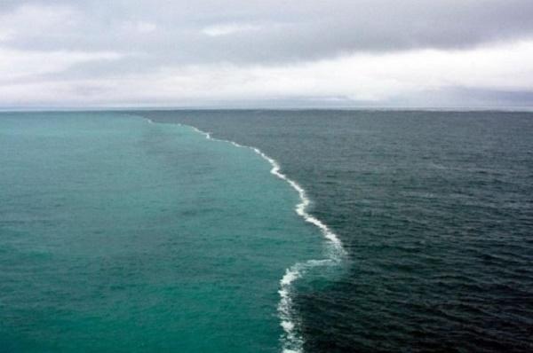 Nơi hai vùng biển gặp nhau